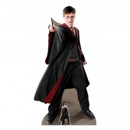 Decoración Photocall Harry Potter Capitán Quidditch 170 cm