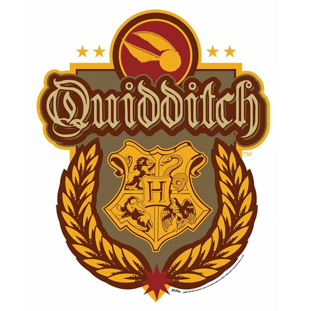 Decoración de Pared Escudo Quidditch Harry Potter 61cm