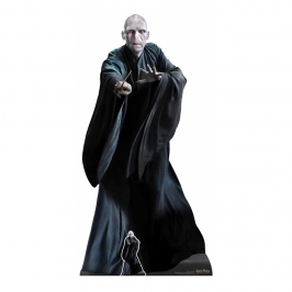 Decoración Photocall Lord Voldemort 184 cm
