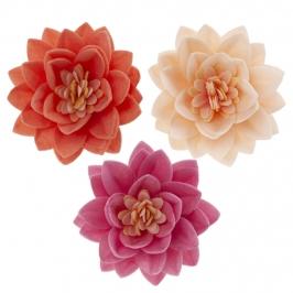 Flor de Loto Oblea 3 Colores 7 cm 15 ud