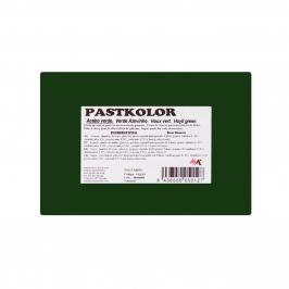 Fondant PastKolor Verde Acebo 250 gr - My Karamelli