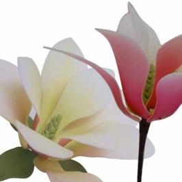 Kit Magnolia: cortadores y marcador