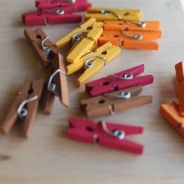 Juego de 16 mini Pinzas modelo Fall