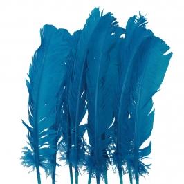 Juego de 10 Plumas Azules 20 cm