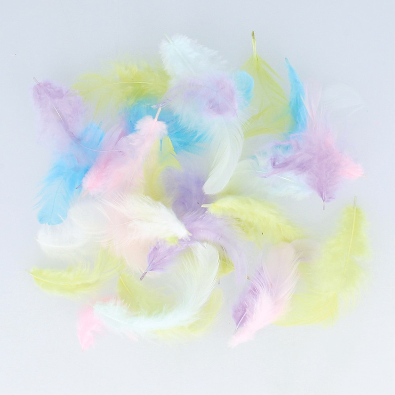 Plumas Decorativas Colores Pastel