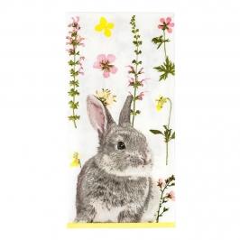 Servilletas Pascua Truly Bunny 20 ud