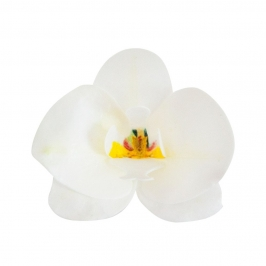 Set 10 Orquídeas de Oblea Blancas 8 cm