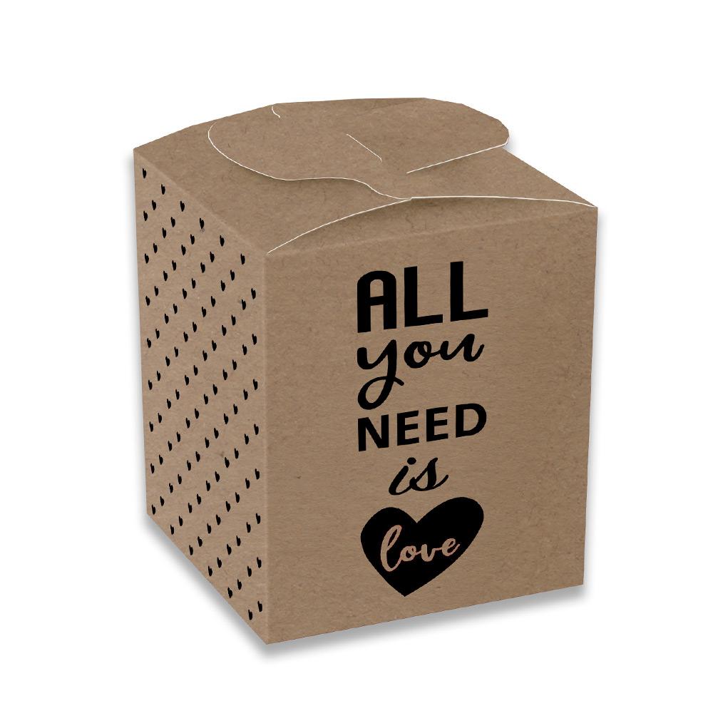 Set de 12 Cajas para Dulces All You Need is Love Kraft