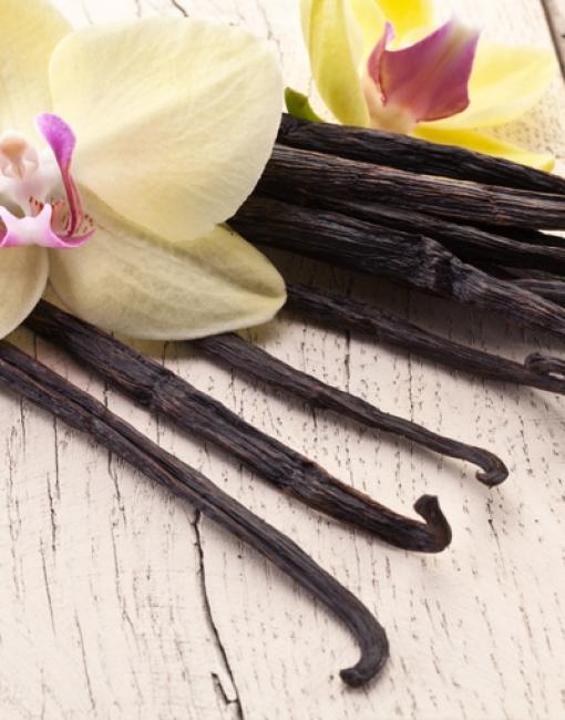 Aromas y Extractos