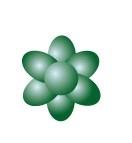 Colorante Sugarflair Pastel Apple Green