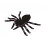 Araña Gigante Morada 15 cm