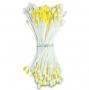 Estambres para flores Städter