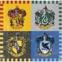 Juego de 16 Servilletas Harry Potter 12,5 cm