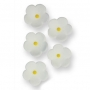 Juego de 30 flores blancas de azúcar PME