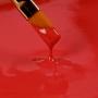 Pintura Comestible Roja Rainbow Dust