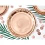 Set de 6 platos de cartón en color rose gold de 23 cm