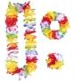 Set Hawaiano Multicolor